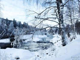 Winterscape by Krasska