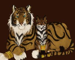 The little Tiger by Nainu