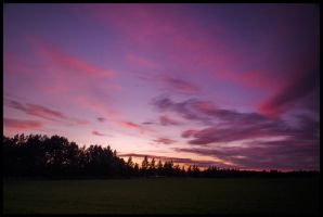 Purple sunset by PaVet-Photography
