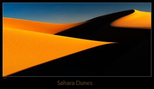 Dunes Of Sahara by dam-yan