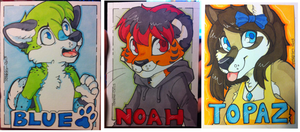 Traditional Badge Commissions - Batch 1 by strawberryneko33