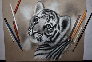 Tiger Cub by sjhowell11