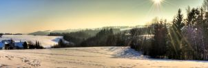 winter landscape by Tschisi