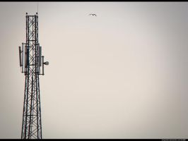 High Signals by IshqAatish