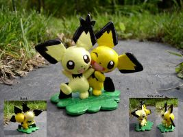 Shiny Boy and Gizamimi Pichu