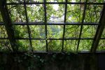 Greenhouse 3  By Cindysart-stock by CindysArt-Stock