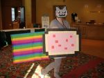 Nyan Cat Cosplay by wrightisright3