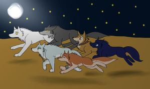 Wolfs Rain Characters and May by 36-May-36