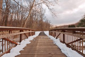Brookside Winter Bridge by somadjinn