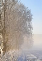 Winter landscape 3 by ThereseBorg