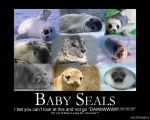 Baby Seals by The-Demon-Ferret