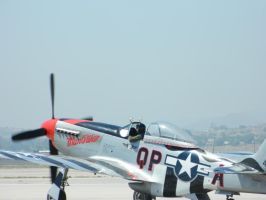 P-51 Mustang by algreat