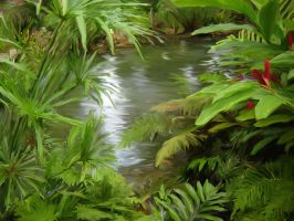 tropical pond by 3cookec