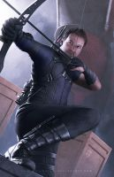 Hawkeye by erlanarya