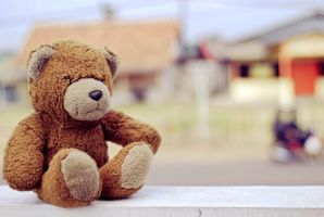 teddy is waiting by ArtRats