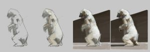Polar bear Studies Process by vladgheneli
