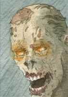 Call of Duty Zombie by DonMatthews
