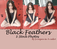 Black Feathers Stock Pack by 3corpses-in-A-casket