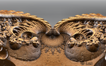 Surf again... by LaxmiJayaraj