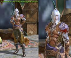Beleg Cuthalion in Aion : Level 21 by fallenRazziel