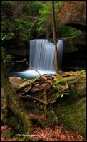 Return To Dog Slaughter Falls by TRBPhotographyLLC