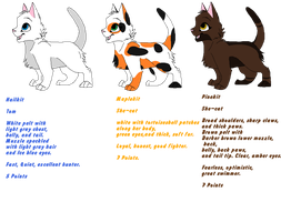 Warrior Kit Adopts! (OPEN) by SNlCKERS