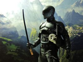 Snake Eyes  - Infiltrate by Riebeck