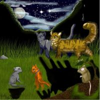 I knew starclan was watching by spark-star