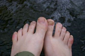 toes by pollybee