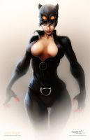 catwoman ! by salo-art