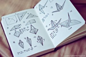 Origami Folding Instructions by TomSimmonds