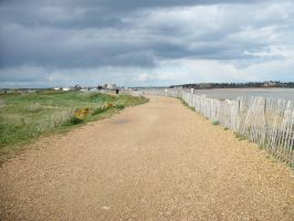 The path leading up to another Martello Tower! by Anita-Sanderson