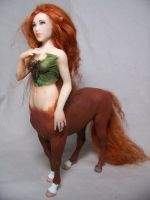 'Rose' ooak Centauress by AmandaKathryn