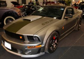 Roush Stang by boogster11