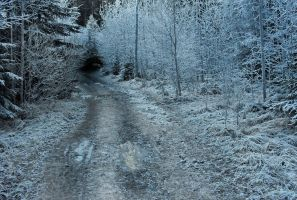 Cold trail by breatheinspiration