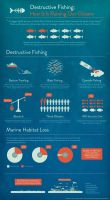 Infographic: Destructive Fishing by AirDuster