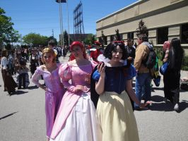 Anime North: Disney Princesses by Zachg56