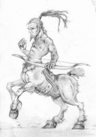 Centaur by dancing-dragon