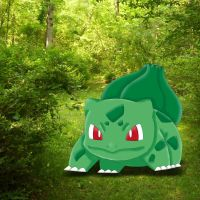 bulbasaur in forest by magicalyuki