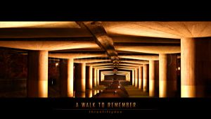 ::: A Walk to Remember ::: by threefiftydee