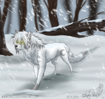 Middle in the snow ::Timelapse video:: by Saiccu