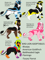 Bird Lions Auction 1 by NikoNikoAdopts