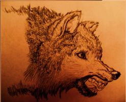 snarling wolf by akina-nicole