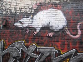 Graffiti Stock 54 by willconquers-stock