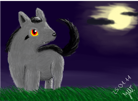 Night of the Wolf by Zorua1