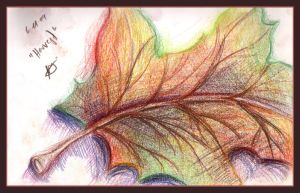 Autumn Leaf by Sinann