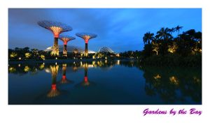 Gardens by the Bay by aloneitsme