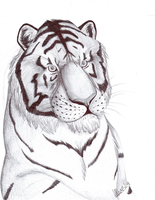 Inked-Tiger by HDevers