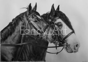 Closeup / HD drawing Clydesdale and KWPN by Odette1994