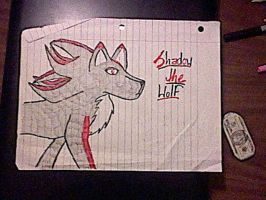 Shadow's a Wolf nao. XD by Skywalker2101